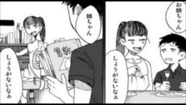 【感動】姉という1ページ漫画の結末がまじ号泣!