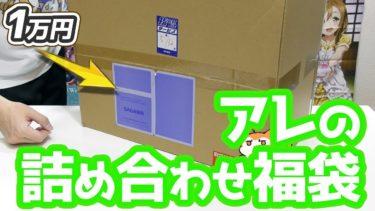 1万円のアニメ系福袋開けたらアレの詰め合わせだった