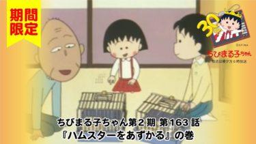 ちびまる子ちゃん アニメ 第2期 第163話『ハムスターをあずかる』の巻