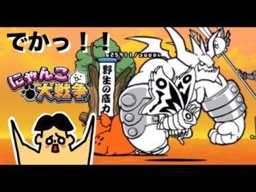 #27 ドイヒーくんのゲーム実況「にゃんこ大戦争その15・日本編・西表島・ぶんぶん先生」