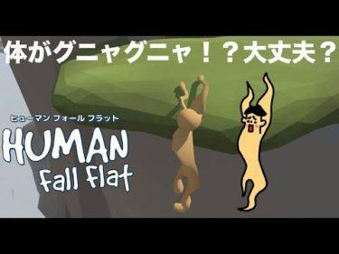 #28 ドイヒーくんのゲーム実況「ヒューマンフォールフラットその5」