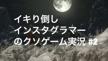 【SEKIRO】#2 イきりインスタグラマーのストゼロゲーム実況