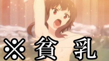 【衝撃】貧乳すぎるアニメキャラがマジでかわいい件www【アニメ】