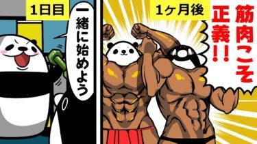 【アニメ】筋トレを続けるとどうなるのか?