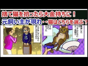 《感動 漫画動画》「捨て猫を拾ったら大金持ちに!その後、元飼い主が現れ・・・猫はどちらを選ぶの?」