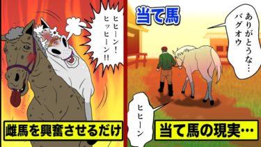 雌馬を発情させるだけが仕事…「当て馬」の悲しい現実を漫画にした。