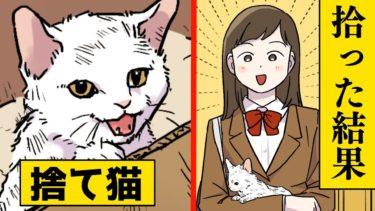 【漫画】父が死んだ→いつも一緒だった猫が「私もいくよ」【マンガ動画】