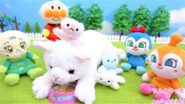 アンパンマン おもちゃ アニメ ねこ産んじゃった! お手伝いをしよう! アニメキッズ