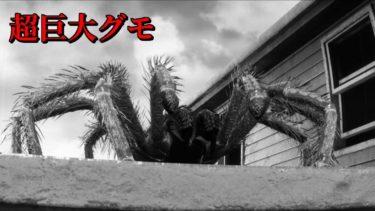 「人喰い巨大グモ」を退治するホラーゲームが面白い! – タランチュラ – ゆっくり実況