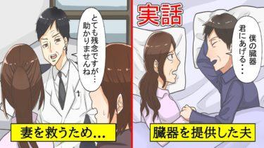 【実話】腎臓病の妻のため…自らドナーになった夫(感動する話)【漫画動画】