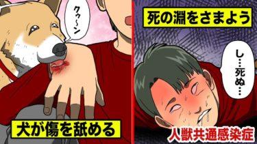 【死菌】愛犬に傷を舐められるのは危険!意識不明の重体になった男…
