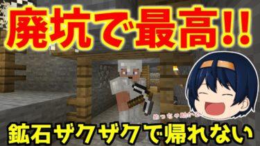 【Minecraft】地下渓谷で廃坑発見!廃坑も統合版サイズで一度入ると抜け出せない! パート5【ゆっくり実況】
